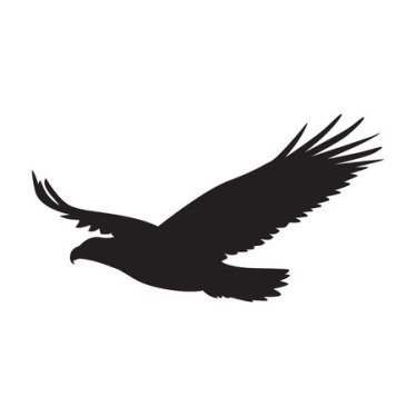 59461100 - vector  silhouette of the bird of prey in flight with wings spread